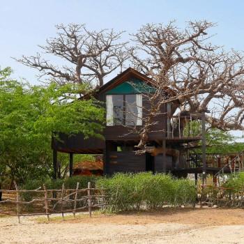 Cabane, Baobab, Niassam