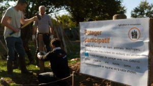 chantier-participatif-permaculture-oasis-borderie