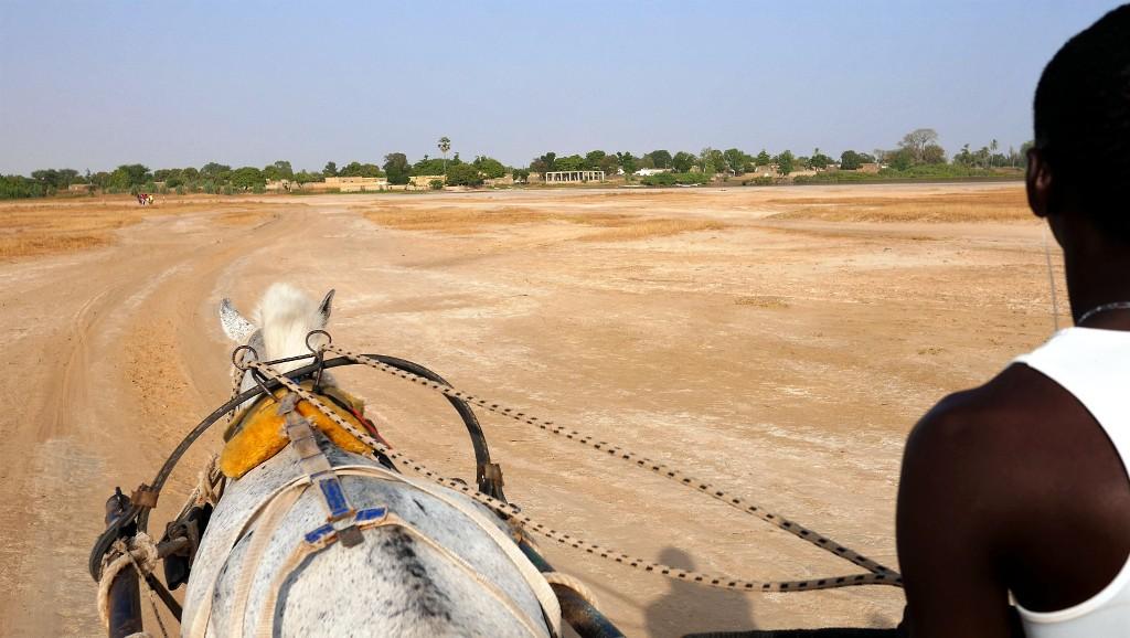 De Dakar à Djilor, calèche