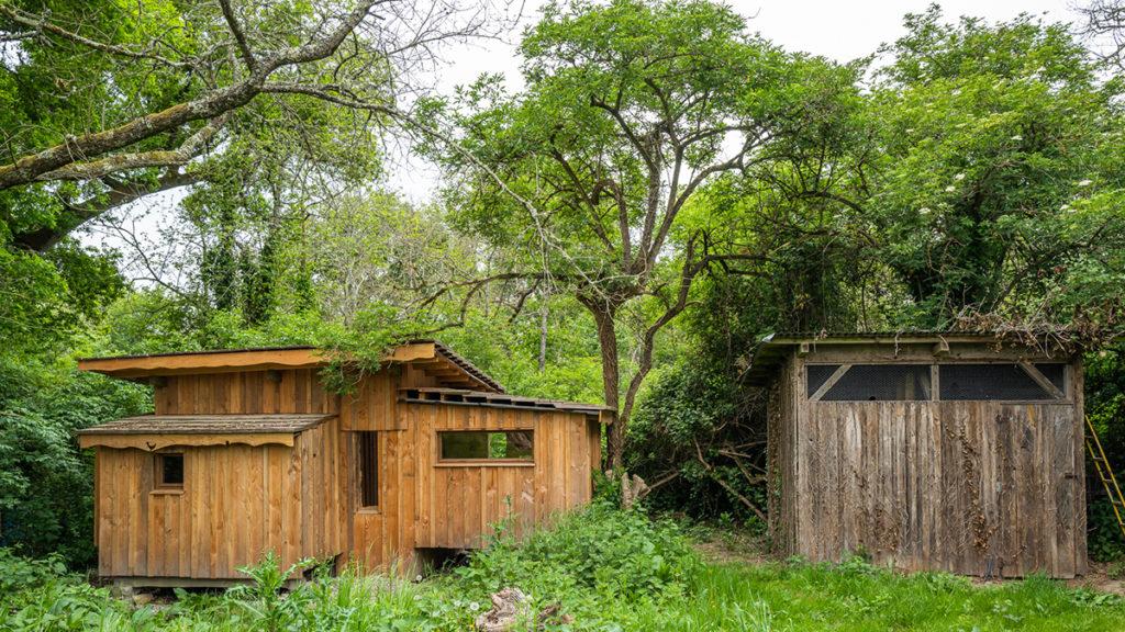 hébergement insolite dans les bois